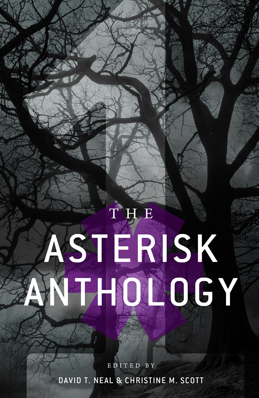 The Asterisk Anthology - Volume 1 - Nosetouch Press